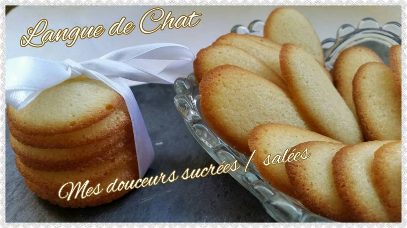 langue de chat delicieuses